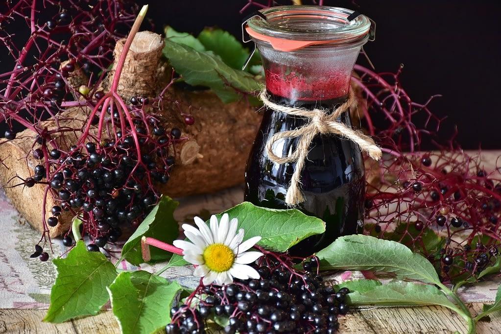 Elder, Elderberries, Berries, Juice